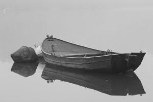 Altrhein im Nebel 2