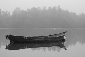 Altrhein im Nebel 3